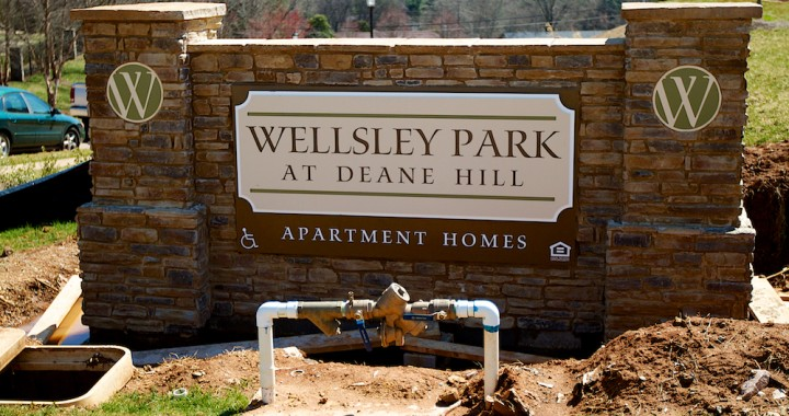 Progress of the Wellsley Park Luxury Apartment Development